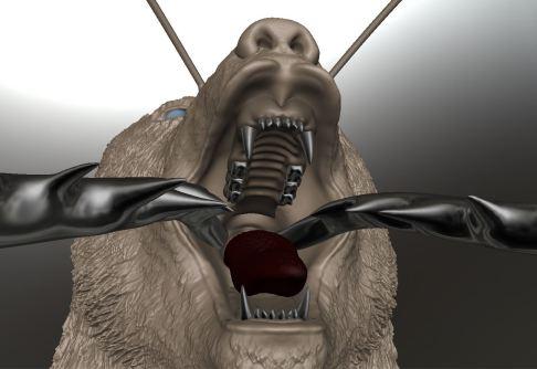 bearcap3