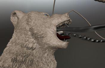 bearcap5